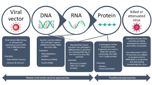 mrna vaccines can kill you