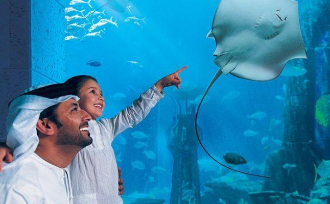 دبي أكواريوم (Dubai Aquarium)