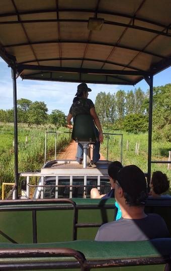 Safári Fotográfico e Trilha do Carandá Pantanal