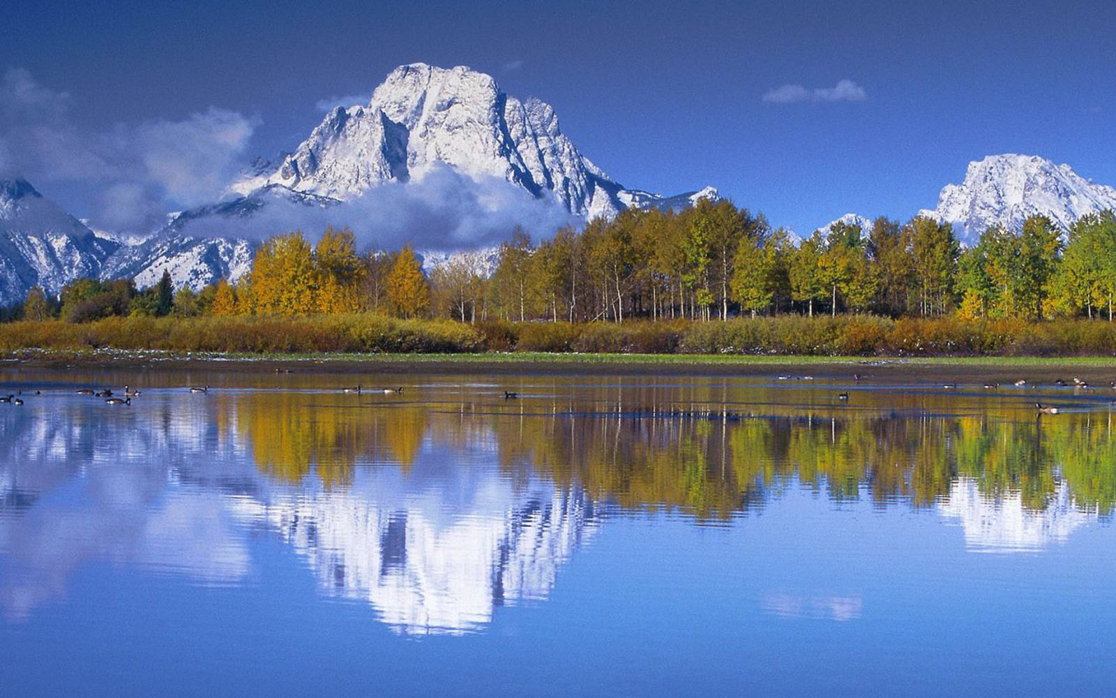 Free Download 3d Wallpapers For Windows 7 Desktop Wallpapers Snake River In Grand Teton National Park