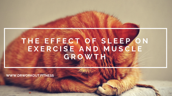 How Does Sleep Affects Exercise