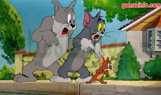 تحميل موسوعة كرتون توم وجيرى | Tom and Jerry | الإصدار الأول