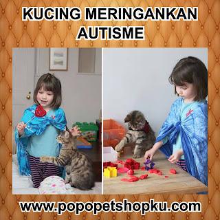 kucing meringankan autisme