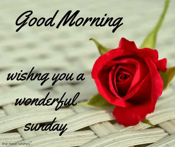 Good morning happy sunday hd images download