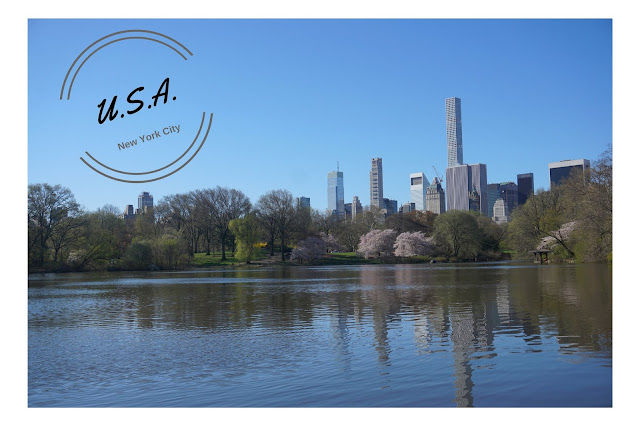 COVERPAGE NEW YORK CITY NOFILTER TRAVEL PHOTOS SUNNY CENTRAL PARK WALK (1)