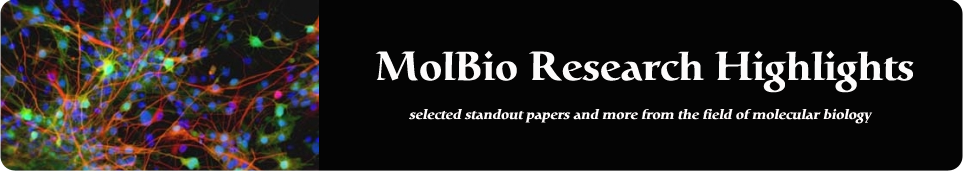 MolBio Research Highlights