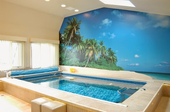 Endless Pool with island mural; installation by Factory-Trained Installer Pete Wackman.