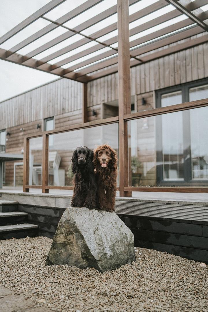 Dog Friendly Cornwall Getaway