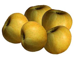 vergers biologique abricot pomme poires cerise prune pêche framboise