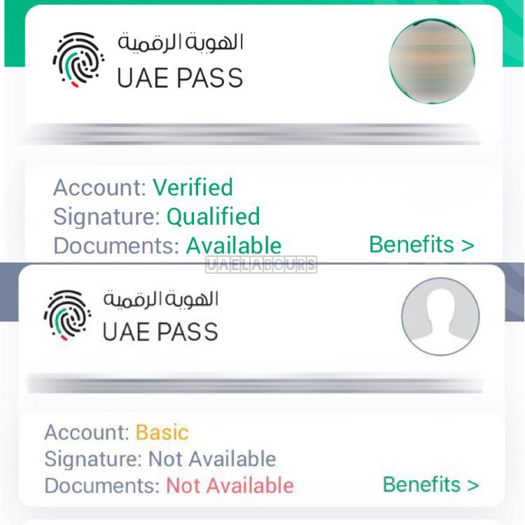 check emirate id status