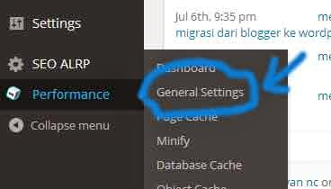 settingan w3c total cache
