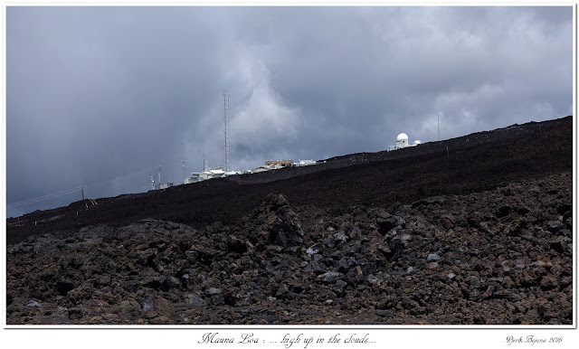 Mauna Loa: ... high up in the clouds...