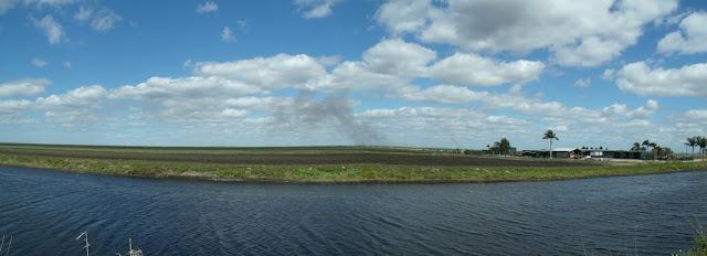 Canales y campos del Everglades Agricultural Area