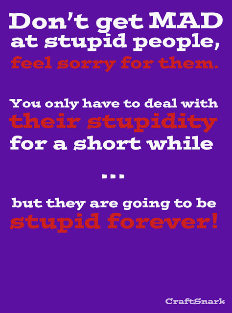 mad at stupid people
