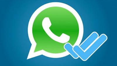 WhatsApp Tidak Bisa Mengirim Pesan? Coba 3 Langkah ini!