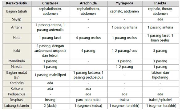 Tabel Klasifikasi Arthropoda