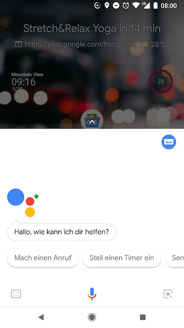 Screenshot des Google Assistant