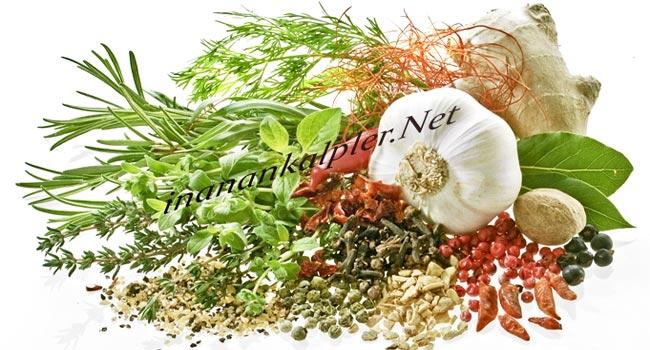 Diyabet Dostu Bitki ve Baharatlar