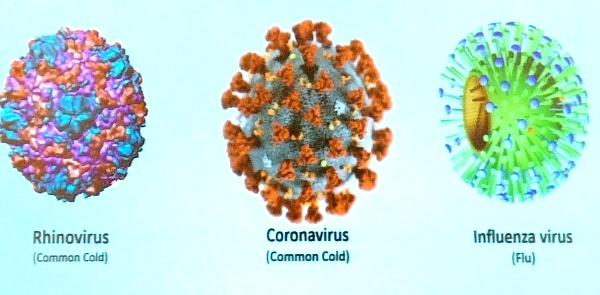 Cara Mencegah Virus Corona