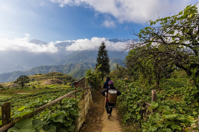 Sapa trek: Can trekking in Sapa without directions? 1