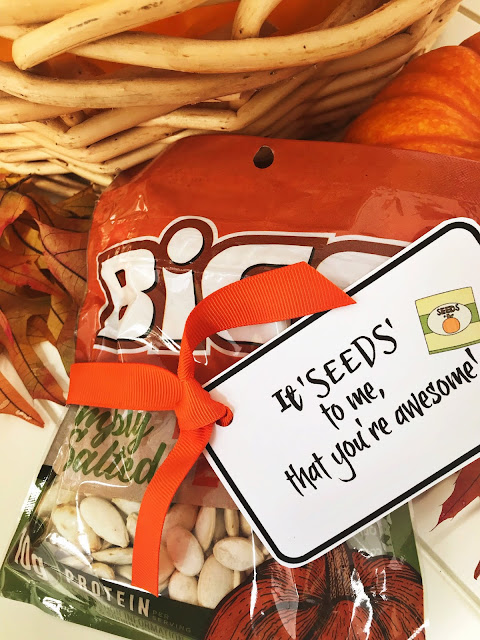 Seed puns with printable tags for gift giving @michellepaigeblogs.com