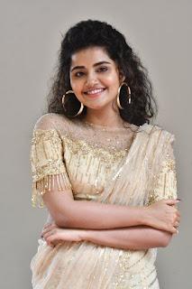 Anupama Parameswaran Photos at Rakshasudu Movie Press Meet