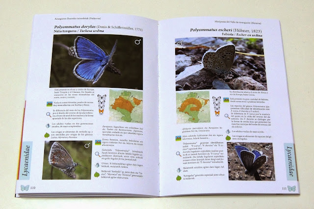Páginas interiores de Mariposas del Valle de Aranguren