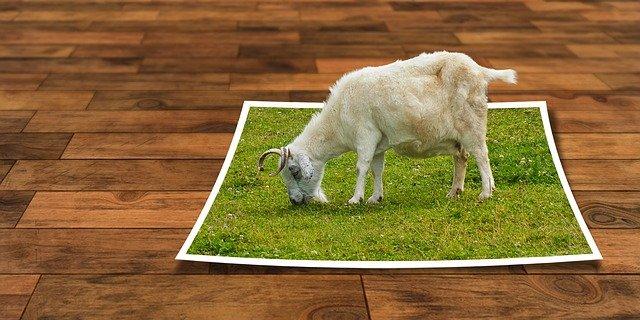 Cara Menghilangkan Background Gambar Online di Situs Website Photo Scissors