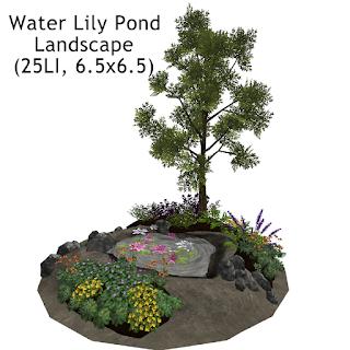 Water Lily Pond Landscape