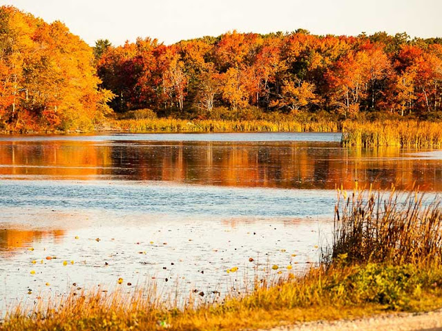 Fall - The best time to traveling America