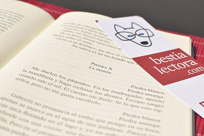 Un cuento de Mónica Ojeda en Bestia Lectora