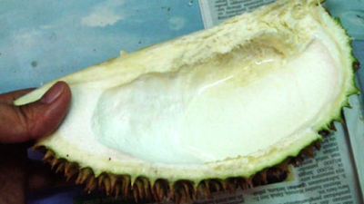 manfaatkan juringan durian untuk menghilangkan bau durian