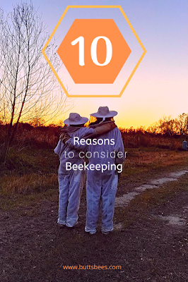 Beekeepers arm in arm in the setting sun