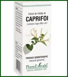 extract de caprifoi negru opinii forum remedii naturiste pentru ficat