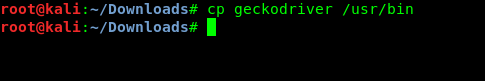 coping geckodriver to /usr/bin