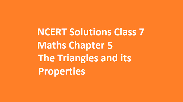 The Triangles and its Properties