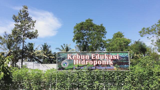 Kebun Edukasi Hidroponik milik Taman Botani Sukorambi.