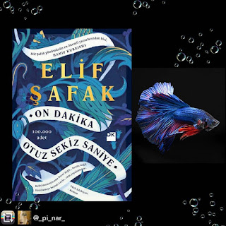 10 Minutes 38 Seconds in This Strange World by Elif Shafak on Nikhilbook img 7