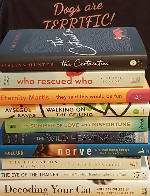 Summer reading: A nice big pile of books chosen by Zazie Todd for her summer reading list