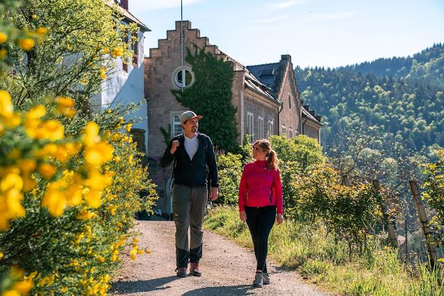 Premiumwanderweg Murgleiter | Etappe 2 von Gernsbach nach Forbach | Wandern nördlicher Schwarzwald 10