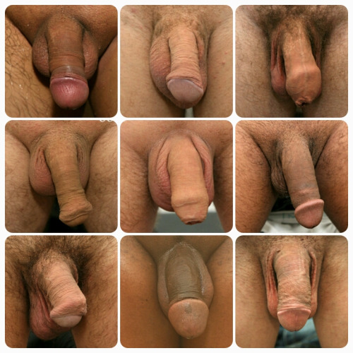 Gay Sucks All Kinds Of Cock