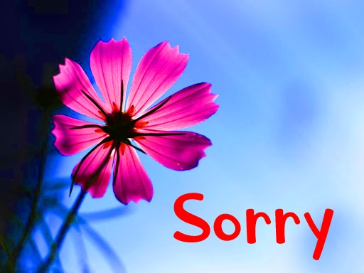 i am sorry pictures