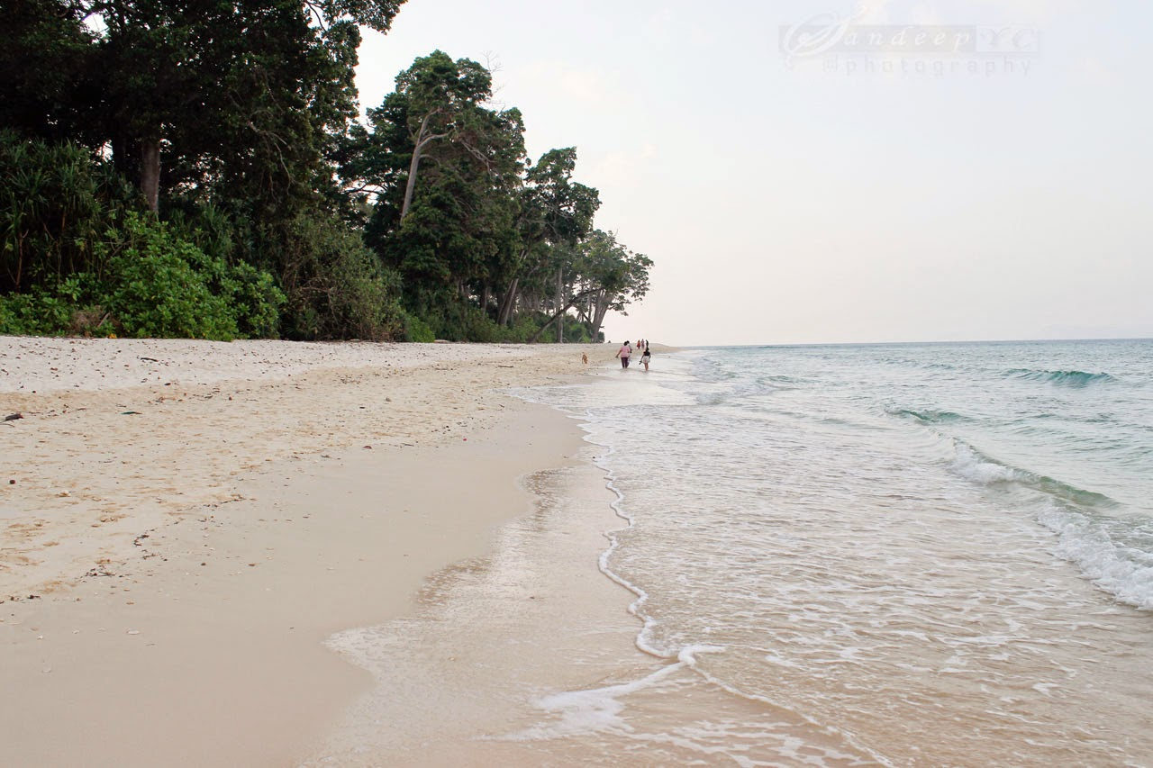 The shoreline of Laxmanpur beach for long sunset Romantic walks