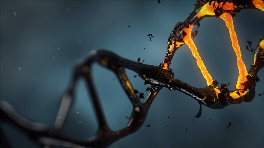 Chamando seu DNA divino