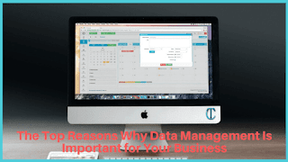 Reasons Why Data Management Is Important for Your Business