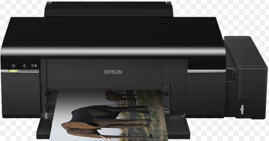 descargar driver epson l800 para windows 7