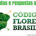 Refresque sua memória: Perguntas e respostas sobre o Código Florestal