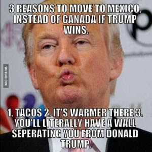 Lupe, der Satire-Blog: Best of Donald Trump (Bilder, Karikaturen ...