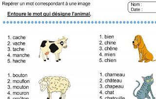 أنشطة  داعمة في الفرنسية المستوى الثاني ابتدائي Repérer un mot correspondant à une image