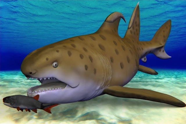 """Scientists Have Named a 300-Million-Year-Old """"Godzilla Shark"""" That Was First Discovered in New Mexico"""